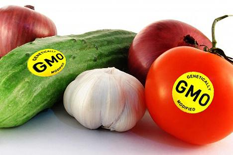GMOS: Not as Harmful as Some May Think