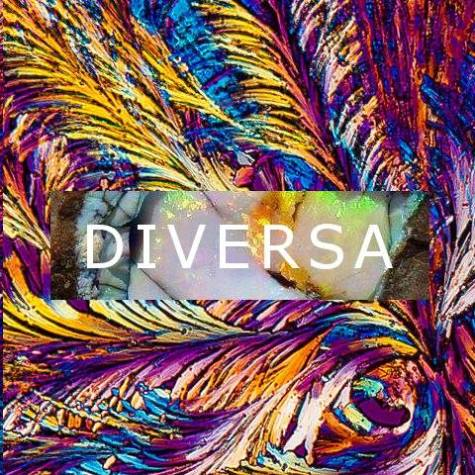 Obscure musician DIVERSA is as original as name