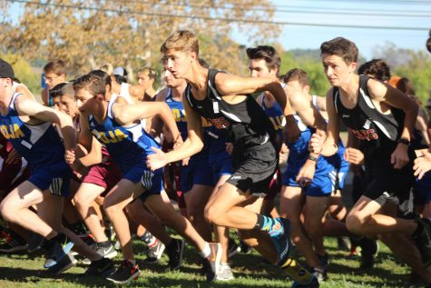 Cross Country: We Caiman First