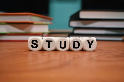 Seven Tips for Surviving Second Semester